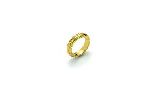 Image of Damen-Ring von Just Cavalli C 1608 Snake
